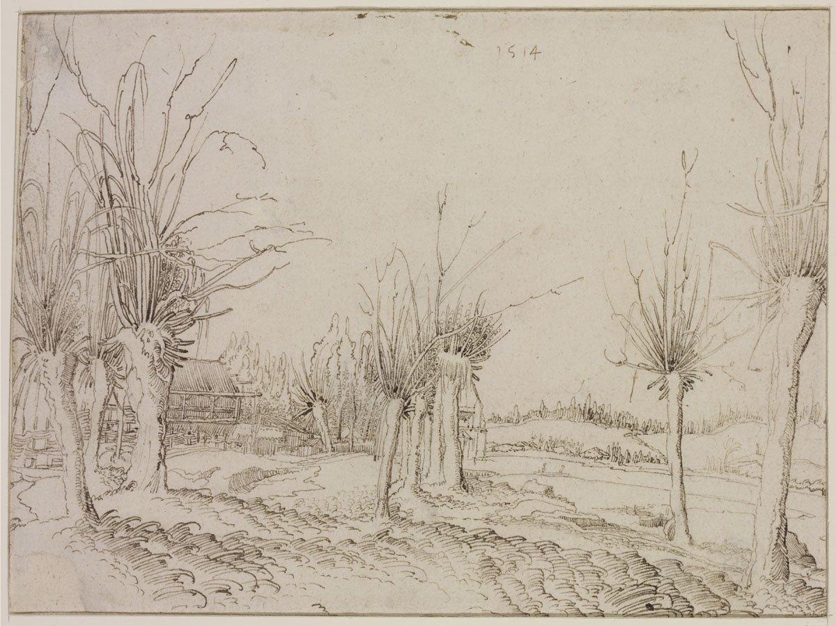Wolfgang Huber: Fűzfák a patak partján, 1514
