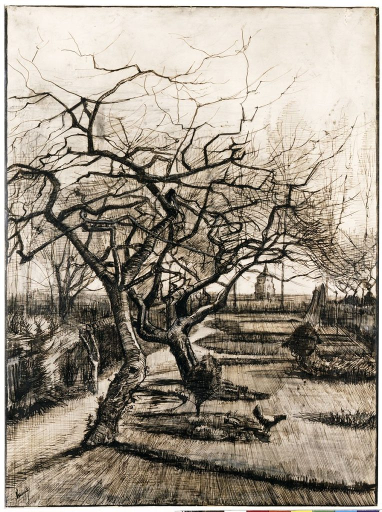 Vincent van Gogh: A neuneni kert télen