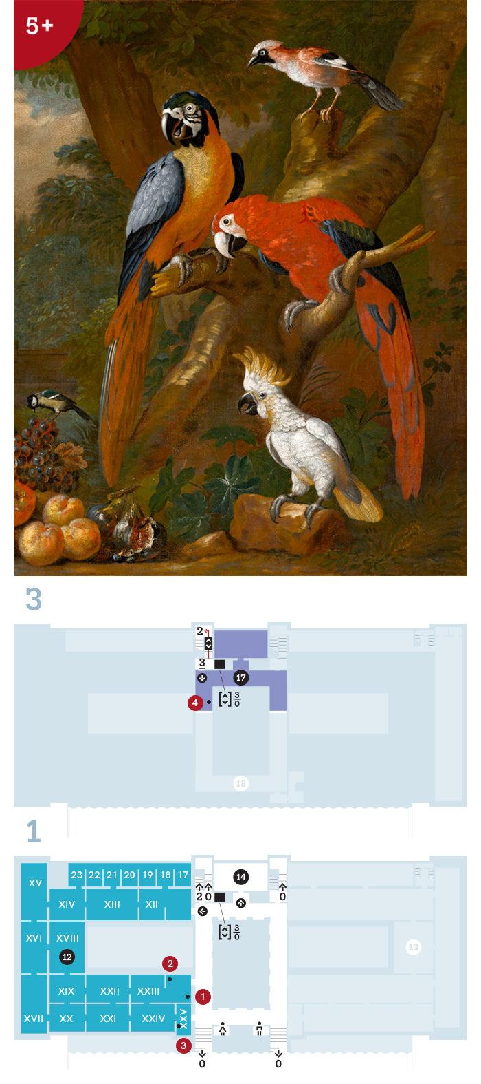 Képvarázs – letölthető színezőkkel